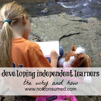 Developing independent learners