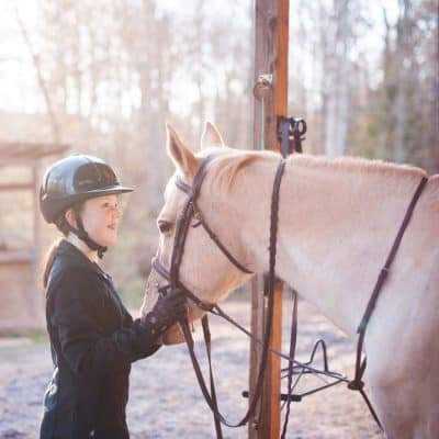 homeschool list for horse lovers