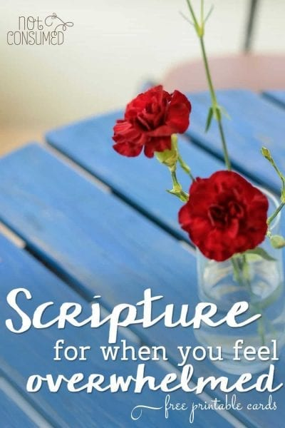 I have had those tears of hysteria and melted into a puddle of overwhelm, too. There's only one thing to do when you feel lost- bask in His Word. I pray these FREE printable scripture cards will bless you.