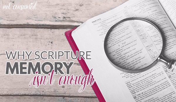 why-scripture-memory-isnt-enough-fbpromo