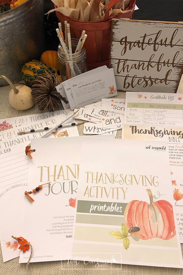 Are you looking for ways to help your children be filled with gratitude (instead of the materialism of the season)? This gratitude printable pack will help you do just that.