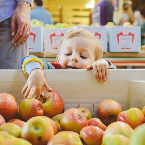 toddler-grabbing-apple