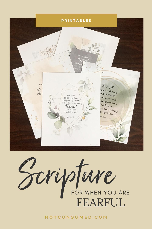 Scripture when fearful